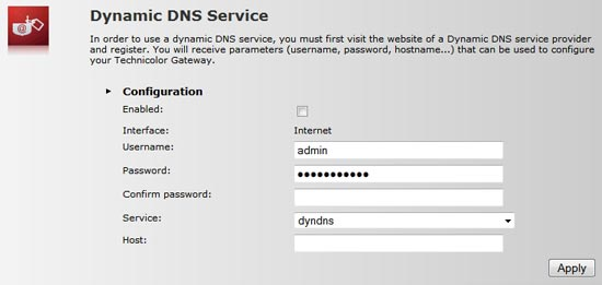 The Dynamic DNS service options